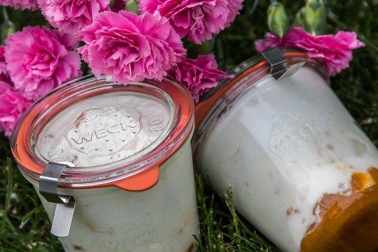 Aprikosen Joghurt Dessert